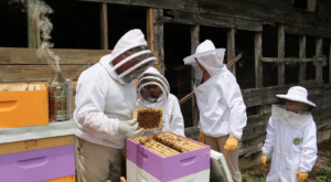 Raising honey bees as part of the South Carolina 4-H Pollinator Program is a family affair for John, Wilson, Catherine and Mary Rae Oxner of Leesville.