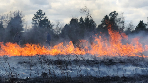 "Prescribed burning is conducted for a segment on ""Making It Grow."""