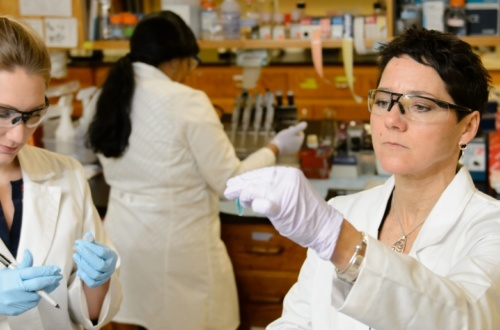 Professor Heather Dunn works with students in the lab in the Poole Agricultural Center.