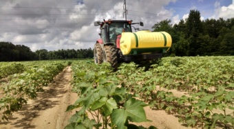 A Clemson ag engineer has received a grant from the S.C. Cotton Board to study how field variability relates to cotton yields.